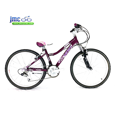 Bentini-Paradise-24-Girls-Alloy-Mountain-Bike